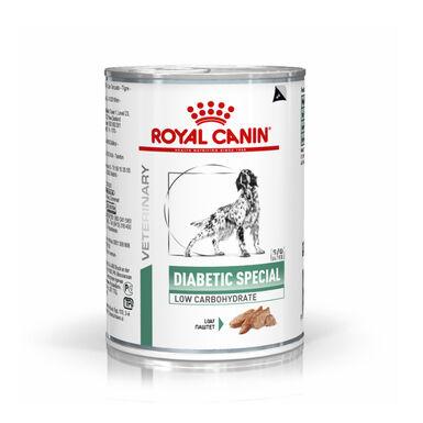 Pack 12 Latas Royal Canin Diabetic