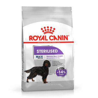 Royal Canin Sterilised Maxi