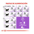 Royal Canin pienso Sterilised 37 para gatos, , large image number null