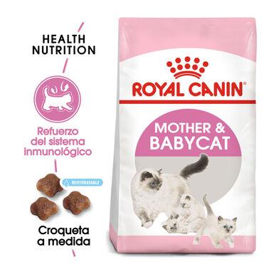 Royal Canin Mother & Babycat pienso para gatitos