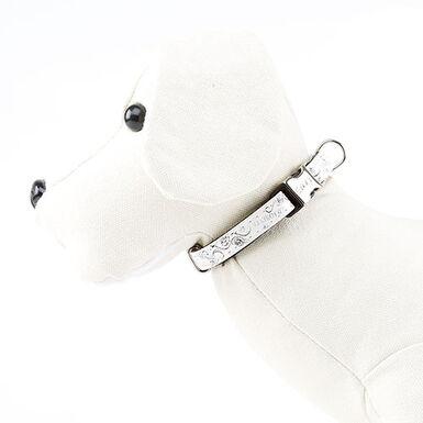 Envy Wild Forever Collar para perros color blanco
