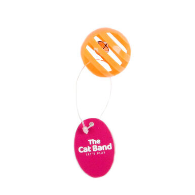 Juguete Plastic Ball The Cat Band para gato