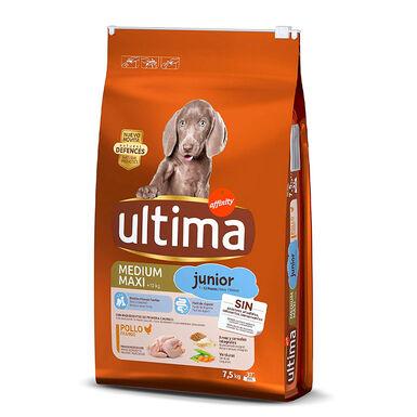 Affinity Ultima Medium / Maxi Junior pienso para perros 7.5 kg