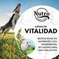 Nutro Grain Free cordero pienso perro raza pequeña image number null