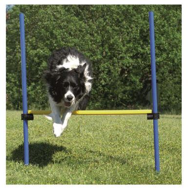 Ribecan valla de salto agility para perros