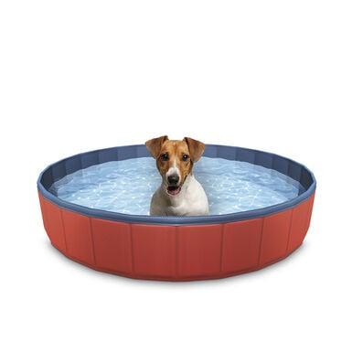 Summer Vibes Piscina para perro