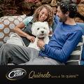 Lata Cesar puppy pavo y ternera 150 gr para cachorro, , large image number null