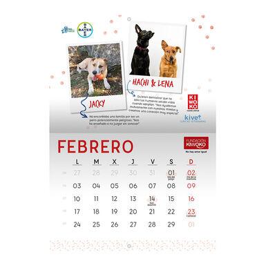 Calendario Solidario Kiwoko 2020