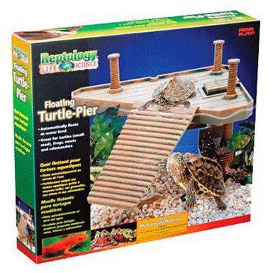 Penn Plax Reptology isla flotante para tortugas