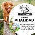 Nutro Grain free adulto mediano cordero image number null