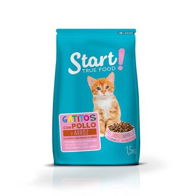 Start Feline Junior