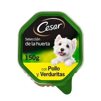 Cesar Huerta Pollo-verdura tarrinas razas pequeñas