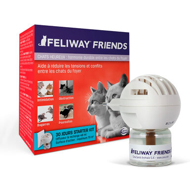 Feliway Friends para gatos