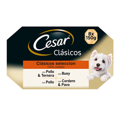 Multipack 24 Latas Cesar Clásicos 150gr