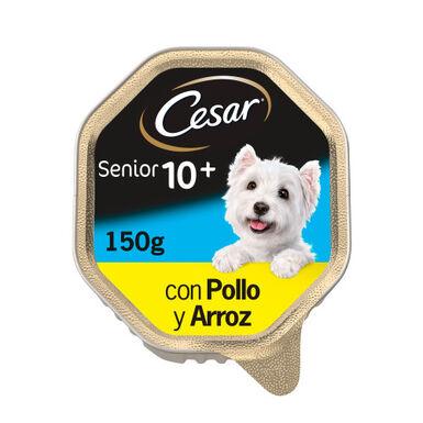 Cesar en Gelatina tarrinas pollo para perro senior150gr