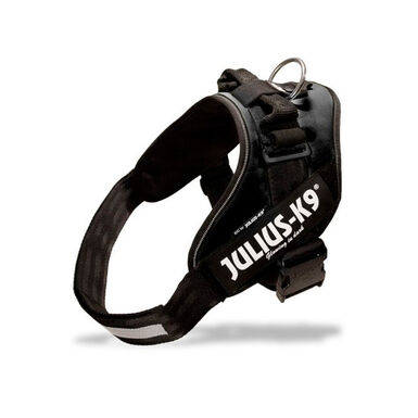 Arnés Julius-K9 IDC color negro