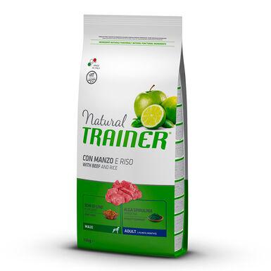 Natural Trainer Adult Maxi ternera, arroz y ginseng
