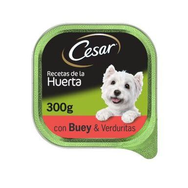 Cesar Lata comida húmeda Buey y verduritas 300gr