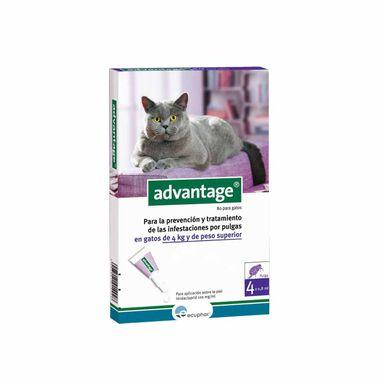 Pipeta antiparasitaria Advantage para gatos 80