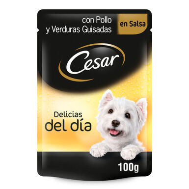 Cesar Pouch Delicias comida húmeda para perros 100gr