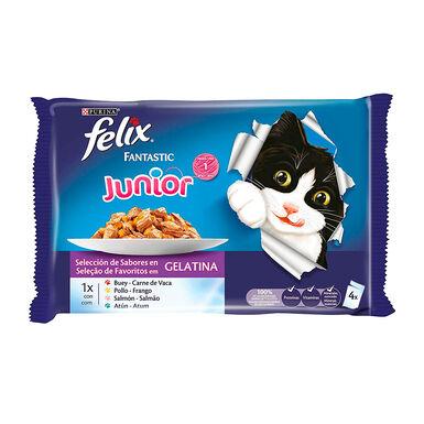 Felix Fantastic Junior sabores combinados en gelatina