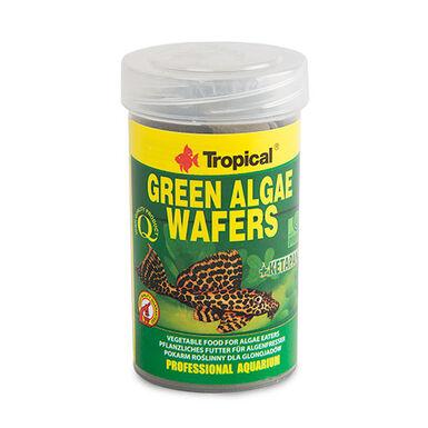 Tropical Green Algae espirulina para peces