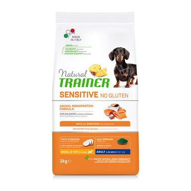 Natural Trainer Sensitive No Gluten Mini Adult Salmón