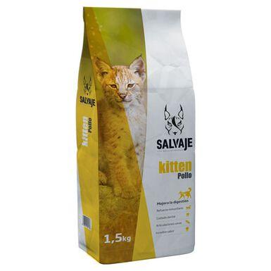 Salvaje Kitten pollo comida para gatos junior