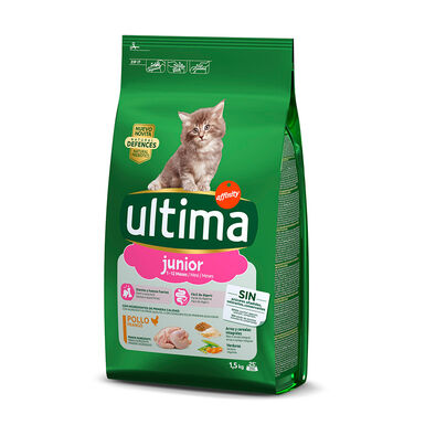 Affinity Ultima Feline junior