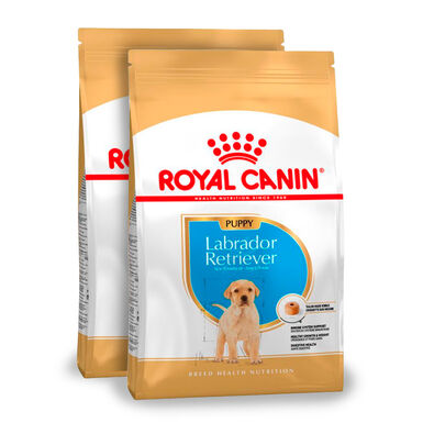 Royal Canin Labrador Retriever Puppy-2 x 12 kg - Pack Ahorro