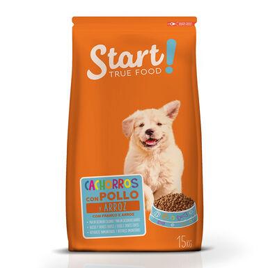 Start Puppy para perro