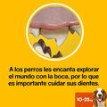 snacks_dentales_pedigree_dentastix_med_56u_06_PED276745_M.jpg image number null