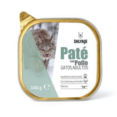 Salvaje paté para gatos