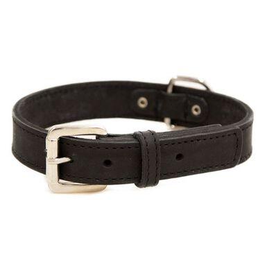 TK-Pet Namur negro collar de cuero para perros