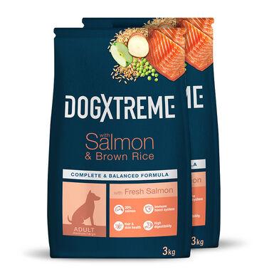 Dogxtreme Salmón y arroz - 2x3 kg Pack Ahorro