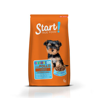 Start Puppy Mini
