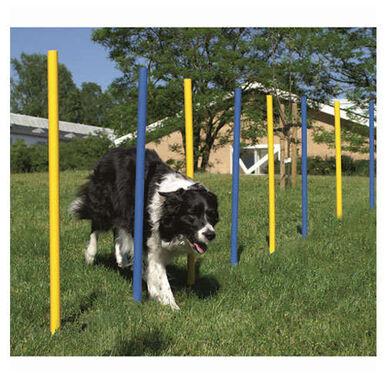Ribecan slalom barras en zigzag para perros