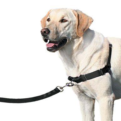 Arnés Easy Walk de sujeción pectoral negro para perro