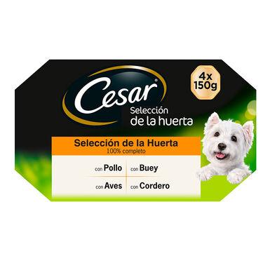 Multipack 24 Latas Cesar Garden Selección de la Huerta 150 gr