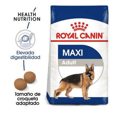 Pienso para perros Royal Canin Maxi Adult