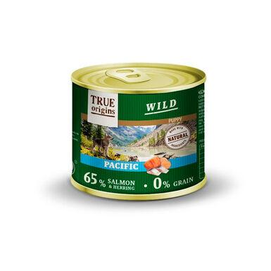 True Origins Wild Junior lata Pacific