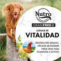 Nutro Wholesome Essentials Adult Pollo 11 kg image number null