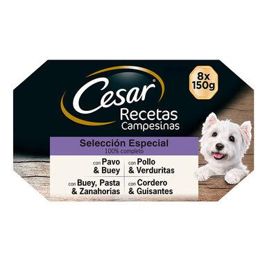 Multipack 24 Latas Cesar Receta campesina 150gr