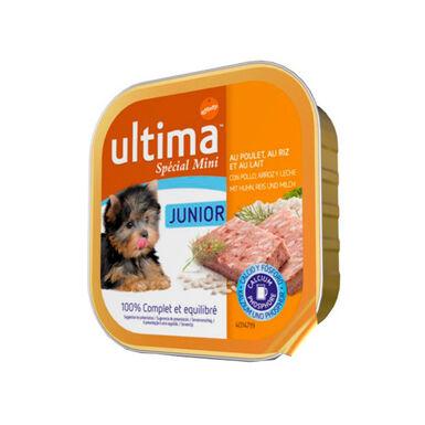 Affinity Ultima húmedo Junior para perros Mini