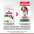 pienso_perros_hills_puppy_medium_cachorro_cordero_new_pack_HIL7696M_M.jpg image number null