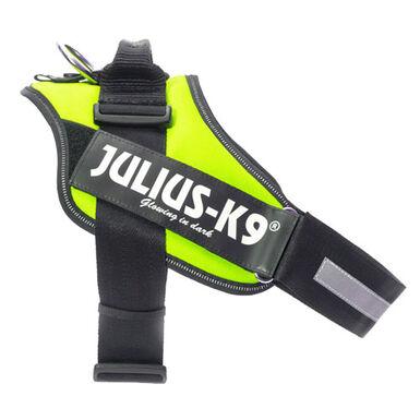 Julius K9 arnés ergonómico neón para perros