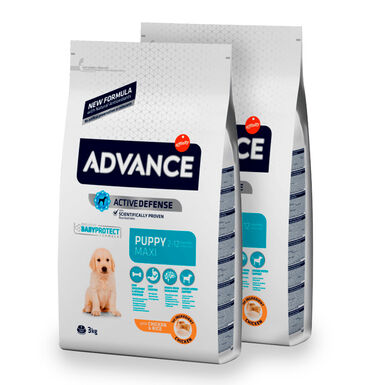 Affinity Advance Maxi Puppy pollo y arroz - 2x12 kg Pack Ahorro