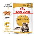 Royal Canin Maine Coon comida húmeda para gatos, , large image number null