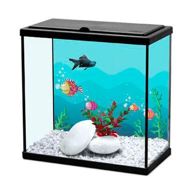 Acuario Kiwoko Start 30 para peces de agua fría