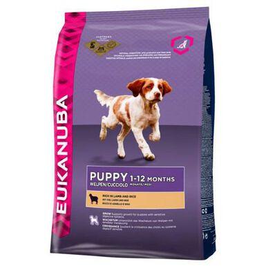 Eukanuba Puppy&Junior Cordero pienso para perros